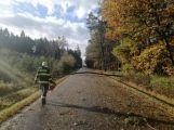 Středočeským hasičům připravil silný vítr přes tisíc zásahů! (8)