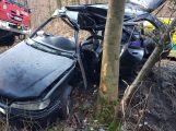 Právě teď: Po nárazu do stromu zůstala řidička uvězněna ve vozidle, v místě přistává záchranářský vrtulník (4)