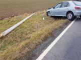 Peugeot přerazil sloup a skončil v příkopu (6)