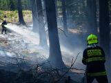 Dobrovolní hasiči z Rožmitálu zasahovali v roce 2017 u 82 událostí (25)
