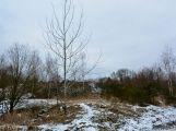 Bezděkovský lom má své kouzlo i v zimě (2)