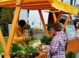 V sobotu nás čeká první farmářský trh (1)
