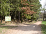 Majitelé pozemků pod příbramským Lesoparkem Litavka se rozhodli oprášit jeho zašlou slávu (1)