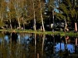 O víkendu zápolili v Rožmitále pod Třemšínem malí i velcí rybáři (28)