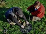 O víkendu zápolili v Rožmitále pod Třemšínem malí i velcí rybáři (27)