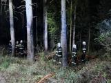 Právě teď: Výjezd příbramských hasičů si vyžádal požár trávy (3)