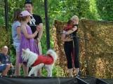 Pohoda pro rodiny, jejichž právoplatným členem je i pes (4)