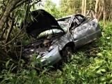 Právě teď: Osobní vůz vyletěl ze silnice, v místě zasahují záchranné složky IZS (3)