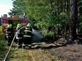 Požár okraje lesa mezi obcemi Nesvačily a Strýčkovy (5)