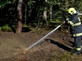 Požár okraje lesa mezi obcemi Nesvačily a Strýčkovy (16)