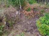 Naučná stezka povede kolem Draka v Žežických skalách (2)