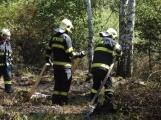 AKTUÁLNĚ: U vrcholu kopce Strážný, nedaleko Trhových Dušníků hoří les (7)