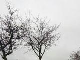 Auto u Narysova skončilo na střeše, řidič se hledá ()