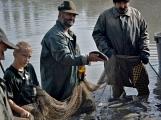 V Rožmitále slavili myslivci i rybáři (87)