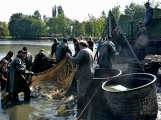 V Rožmitále slavili myslivci i rybáři (78)