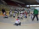 Další generace malých hokejistů vyzkoušela příbramský led (18)
