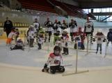 Další generace malých hokejistů vyzkoušela příbramský led (19)