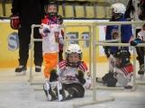 Další generace malých hokejistů vyzkoušela příbramský led (20)