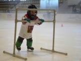Další generace malých hokejistů vyzkoušela příbramský led (25)