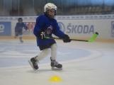 Další generace malých hokejistů vyzkoušela příbramský led (8)
