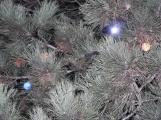 Náměstí 17. listopadu se připravuje na adventní víkendy (3)