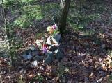 Nedaleko Drkolnova vzniká nelegální hřbitov pro zvířata (4)