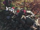 Nedaleko Drkolnova vzniká nelegální hřbitov pro zvířata (9)