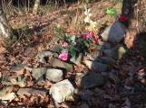Nedaleko Drkolnova vzniká nelegální hřbitov pro zvířata (2)