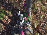 Nedaleko Drkolnova vzniká nelegální hřbitov pro zvířata (8)