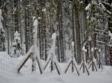 Zimní Brdy uvítaly účastníky pochodu pořádnou sněhovou nadílkou (4)