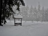 Zimní Brdy uvítaly účastníky pochodu pořádnou sněhovou nadílkou (2)