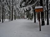 Zimní Brdy uvítaly účastníky pochodu pořádnou sněhovou nadílkou (13)