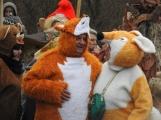 Fotogalerie: Bohutínem prošel masopustní průvod ()