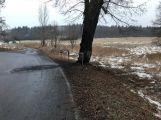 Při nehodě u Hluboše uhořel v autě člověk ()