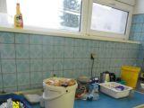 Hygiena si došlápla na jídelnu Stavus v areálu DAS (2)