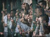 K letošní Noci kostelů se podruhé připojila i vězeňská kaple na Bytíze (1)