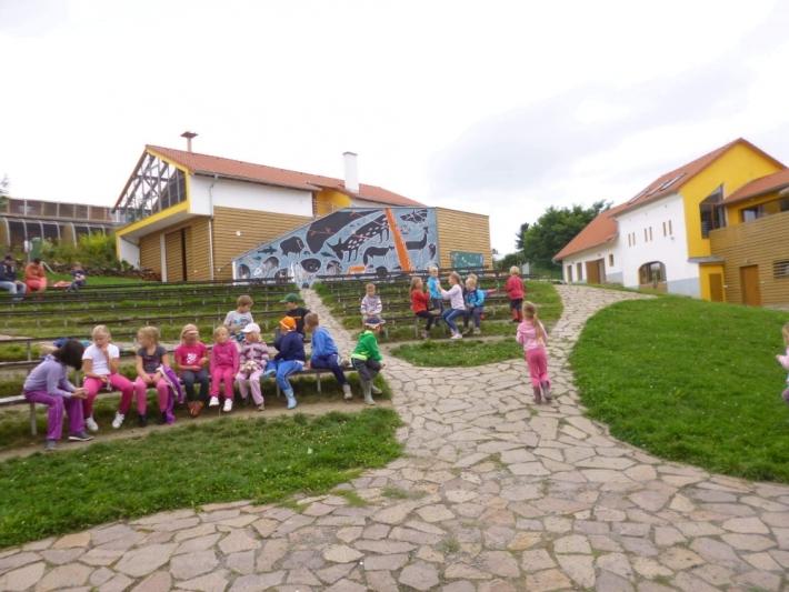 Ochrana fauny ČR pečuje o zraněná zvířata a …