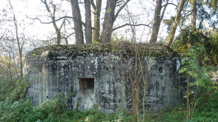 V Kamýku dodnes stojí několik zachovaných řopíků