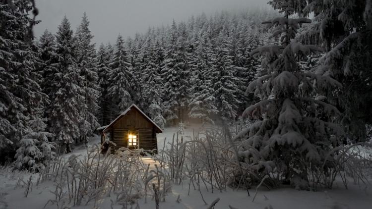 Výprava do brdských lesů: Jak si užít zimní túry bez omrzlin
