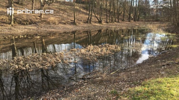 Příbram chce vyčistit Čekalíkovský rybník a zvelebit jeho okolí