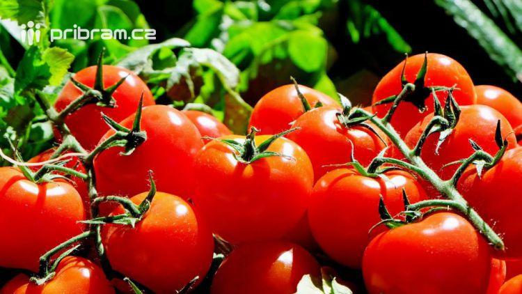 Milovník rajčat sklidil cizí úrodu