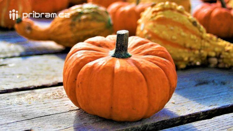 Sobotní Farmářské trhy nabídnou podzimní ovoce, zeleninu i dušičkové vazby