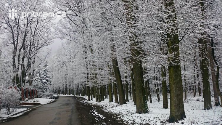 Podle předpovědi počasí se naše silnice nezlepší