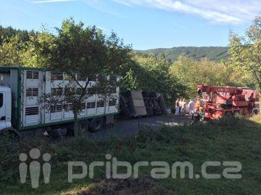 Za obcí Hluboš se převrátil návěs s prasaty, silnice je uzavřena