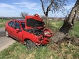 Právě teď: Auto narazilo přímo do stromu, zasahují všechny složky IZS