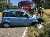 Právě teď: Řidička při příjezdu do Příbrami nabourala do stromu. Příčinou nehody byla vosa