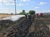 Aktuálně: Mimořádné nasazení hasičů si momentálně vyžádala likvidace požáru pole na Rožmitálsku