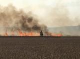 Aktuálně: Čtyřmetrové plameny zachvátily pole, hasiči bojují s ohněm