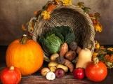 Farmářské zboží opět na Dvořákově nábřeží
