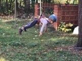 Děti šplhaly se skauty v korunách stromů